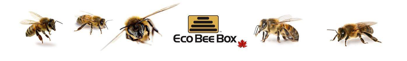 Eco Bee Box - Modern Urban Beekeeping Logo